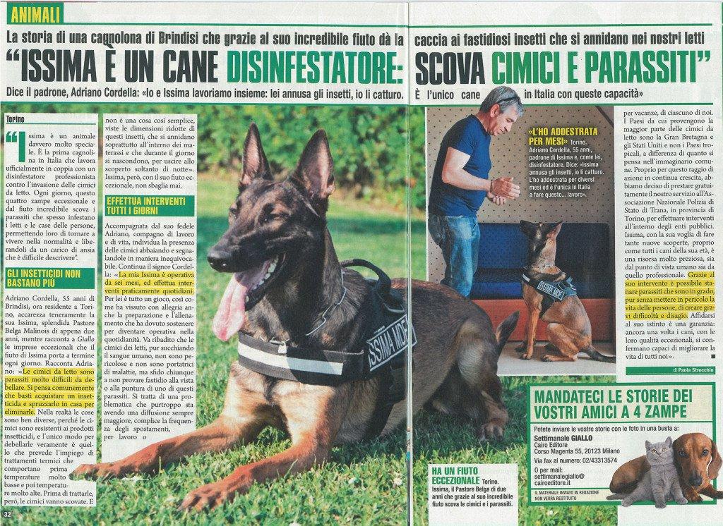 Articolo Issima - Cane Disinfestatore a Caccia della Cimice dei Letti