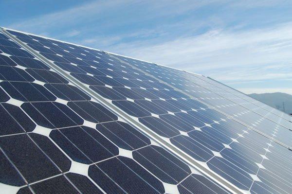 Derattizzazione Impianti Fotovoltaici - Cordella Disinfestazioni Torino